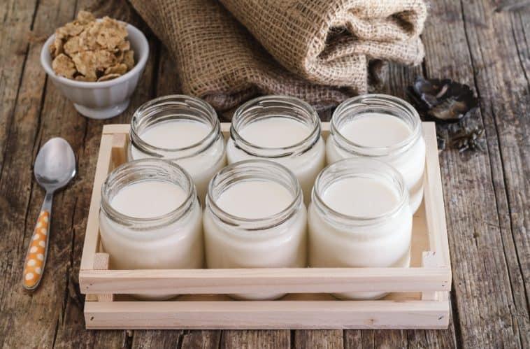 homemade yogurt in jars