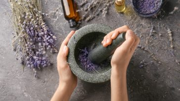 making lavender extract