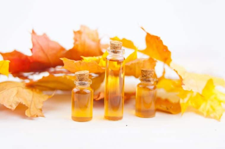 maple extract in bottles