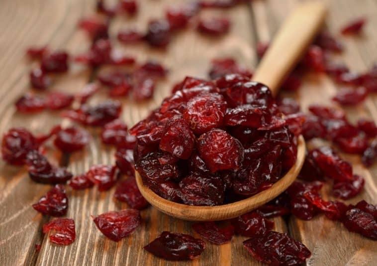 scoop of dried cranberries