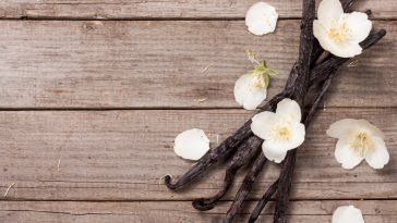 vanilla bean pods on a table
