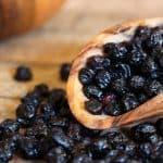 wooden scoop of dried blueberries