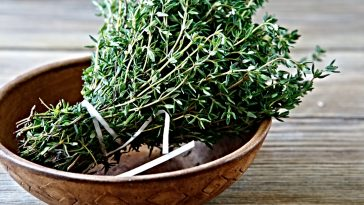 wood bowl with bundle of fresh thyme