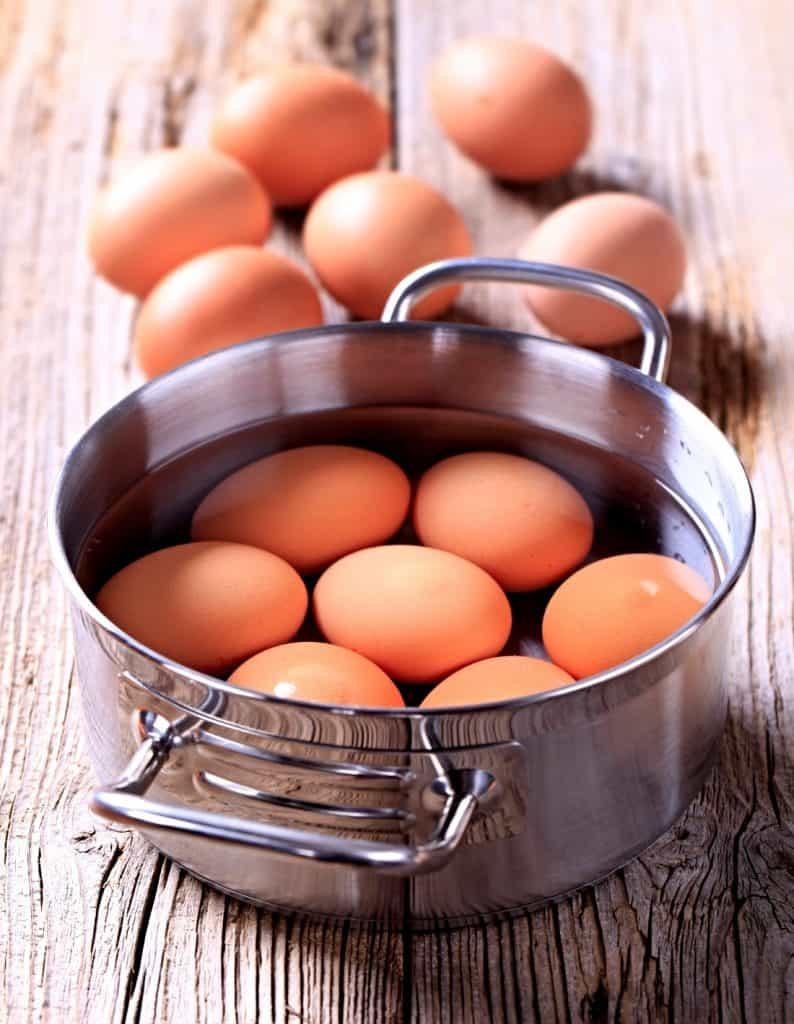eggs in pot of water