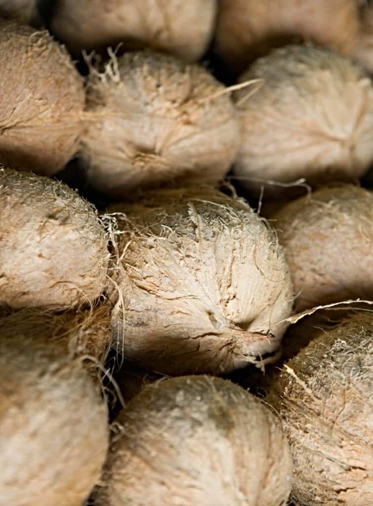 pile of whole coconuts