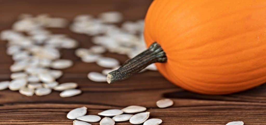 pumpkin and pumpkin seeds