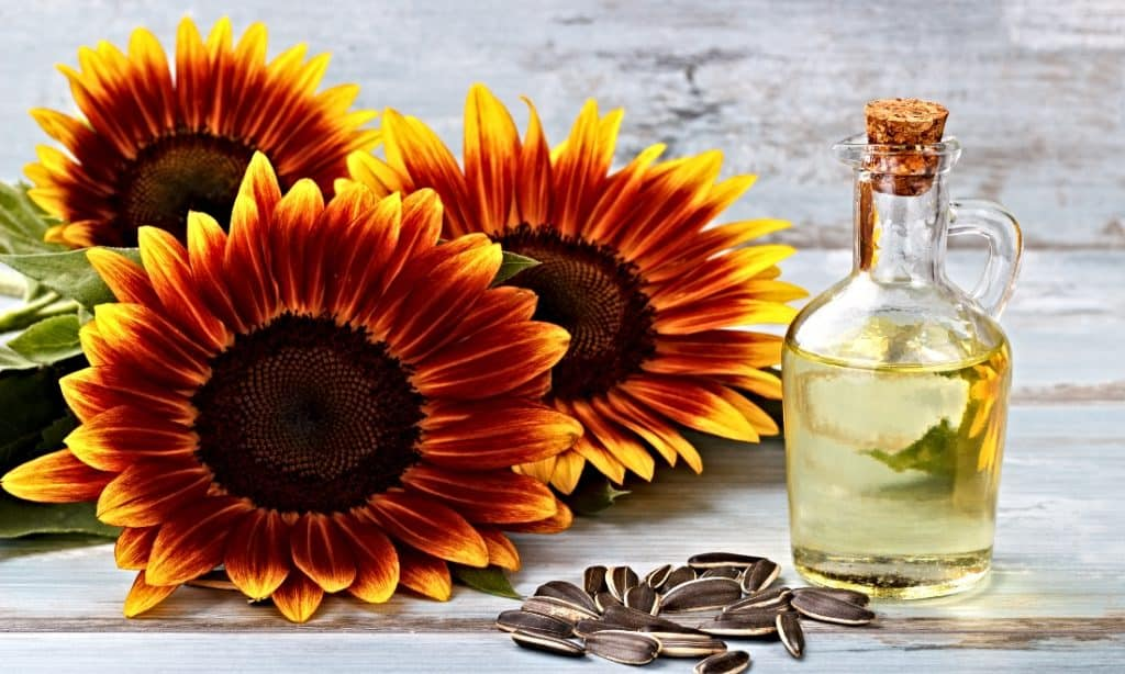 sunflower oil in jar with sunflowers